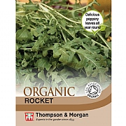 Thompson & Morgan Herb Rocket (Organic) Seeds