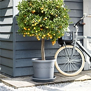 Elho Algarve Cilindro Planter with Wheels 40cm