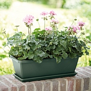Elho Barcelona 70cm Trough (Various Colours)