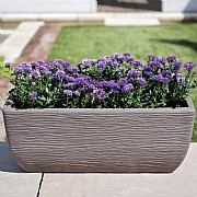 Cotswold Trough Planter 60cm