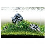 Evolution Aqua Aquascaper 600 Aquarium & Cabinet