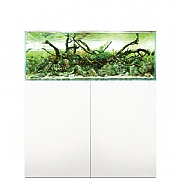 Evolution Aqua Aquascaper 900 Aquarium & Cabinet
