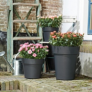 Elho Green Basics Top Planter 40cm