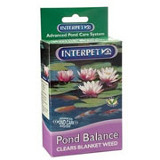 Pond Balance - 2 Sizes Available
