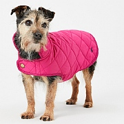 Joules Newdale Quilted Pet Coat Raspberry - Various Sizes