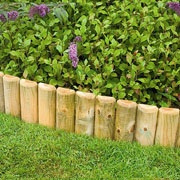 Forest Wooden Border Log Roll