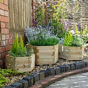 Forest York Wooden Planter
