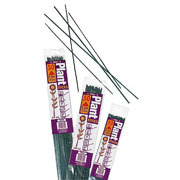 Pack of 25 Plant Sticks - 3 Sizes Available