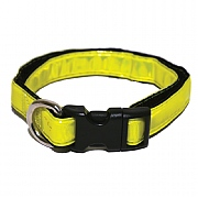 Rosewood High Visibility Dog Collar