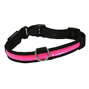 Rosewood Pink Premium Flashing Dog Collar