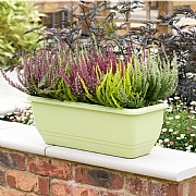 Stewart Garden Patio Trough 50cm (Various Colours)