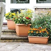 Green Self Watering Balconniere Square Planter - 3 Sizes