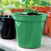 Green Premium Flower Pot - Various Sizes