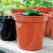 Black Premium Flower Pot - Various Sizes