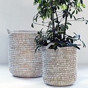 White Woven Basket Planter - Various Sizes