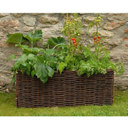 Willow Vegetable Planter - 2 Colours Available