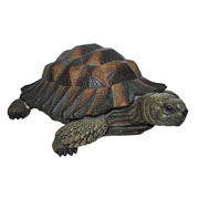 Natures Friends Tortoise - 2 Sizes Available